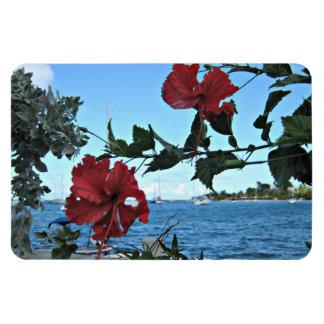 Tropical Island Flowers Rectangular Photo Magnet