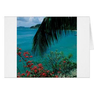 Tropical Island Friendship Bay Bequia Card
