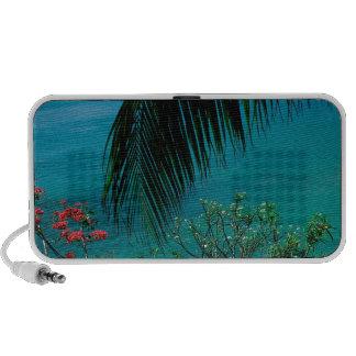 Tropical Island Friendship Bay Bequia iPod Speakers