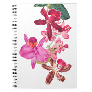Tropical Island Orchid Flowers Floral Notebook