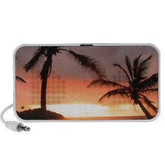 Tropical Island Palms Dominican Republic Portable Speaker