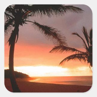 Tropical Island Palms Dominican Republic Square Sticker