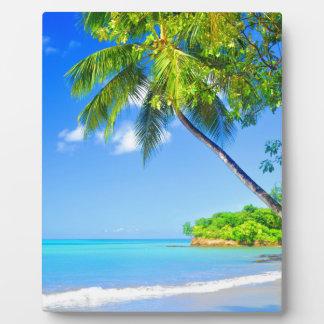 Tropical island plaque