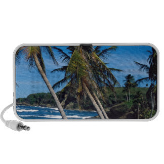Tropical Island Summer Waves St Lucia iPhone Speakers