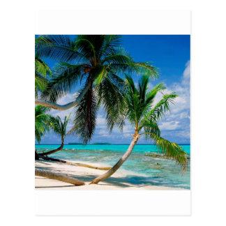 Tropical Island Tepuka Tuvalu Postcard