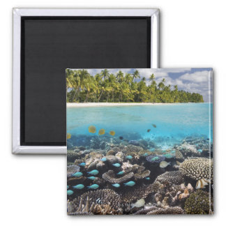 Tropical Lagoon in South Ari Atoll in the 2 Inch Square Magnet
