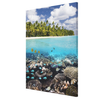 Tropical Lagoon in South Ari Atoll in the Canvas Print