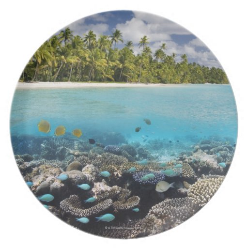 Tropical Lagoon in South Ari Atoll in the Party Plates