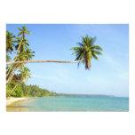 Tropical Landscape Custom Announcement
