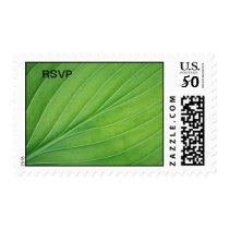 Tropical leaf postage