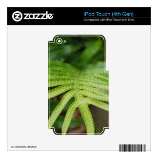Tropical Leaf iPod Touch 4G Decals