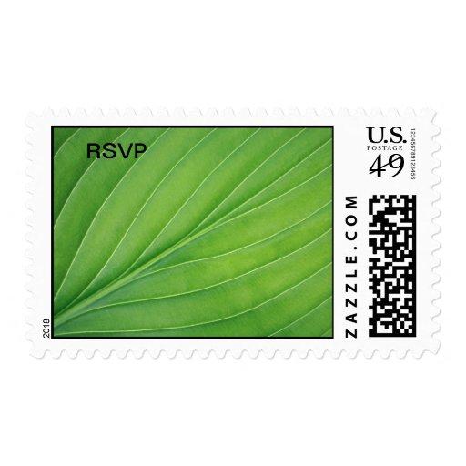 Tropical leaf stamp