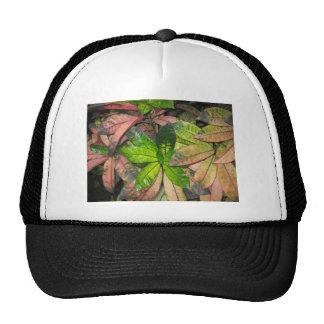 Tropical Leaves Trucker Hats
