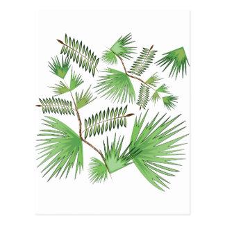Tropical Leaves Postcard