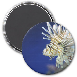Tropical Lionfish Refrigerator Magnets