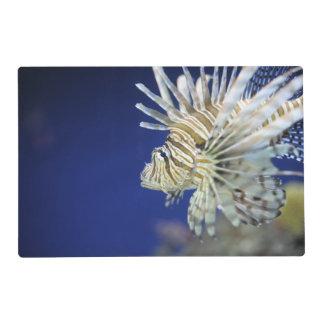 Tropical Lionfish Placemat