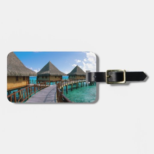 Tropical Tags For Luggage