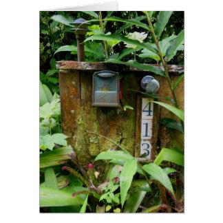 Tropical Mail Box Card