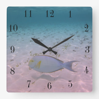 Tropical Maldives Beach Turquoise Sea Coral Fish Square Wall Clock