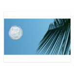 Tropical Moon Post Card