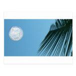 Tropical Moon Postcard