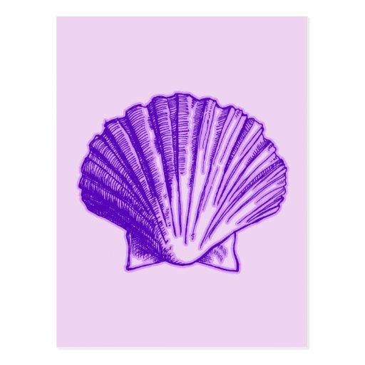 Tropical Moonlight Purple Shell Postcard
