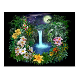 Tropical Nights Postcard