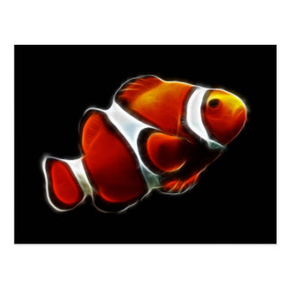 Tropical Orange Clownfish Clown Fish Postcard