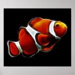 Tropical Orange Clownfish Clown Fish Poster
