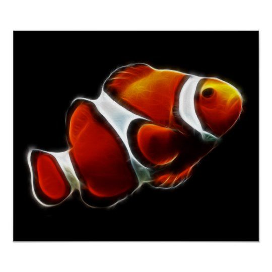 Tropical Orange Clownfish Clown Fish Poster