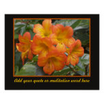 Tropical Orange Flowers Nature Photo Template Print