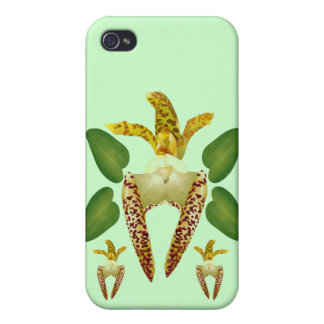 Tropical Orchid Case For iPhone 4