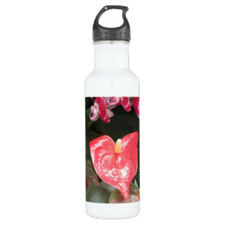 Tropical Orchid flowers 24oz Water Bottle