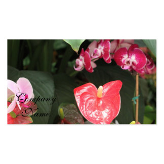 Tropical Orchid flowers Business Card Templates
