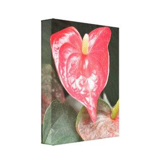 Tropical Orchid flowers Canvas Prints