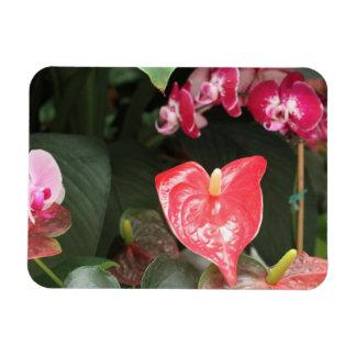 Tropical Orchid flowers Vinyl Magnet