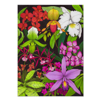 Tropical Orchid Garden Poster
