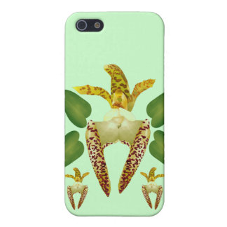 Tropical Orchid iPhone 5 Cover
