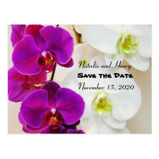 Tropical Orchids Save the Date Postcard