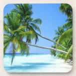 Tropical Palm Beach! Drink Coasters