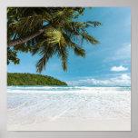 Tropical Palm Beach Poster