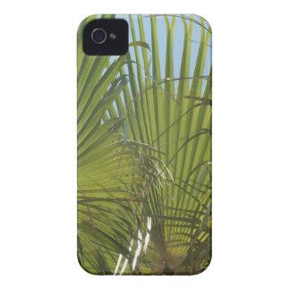 Tropical palm Case-Mate iPhone 4 case