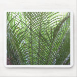 Tropical Palm Frond Mouse Pad