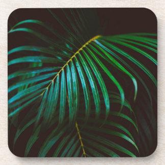Tropical Palm Leaf Calm Green Minimalistic Coaster