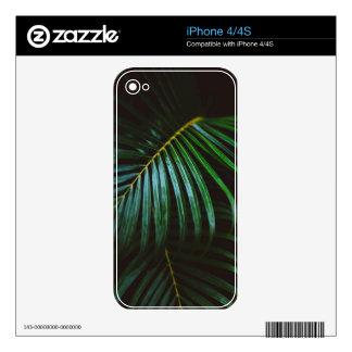 Tropical Palm Leaf Calming Green, Meditative Skin For iPhone 4