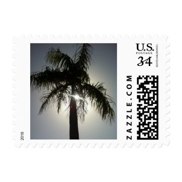 Tropical Palm Postage