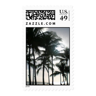 Tropical Palm Sillouette at Sunset Waikiki Beach Postage