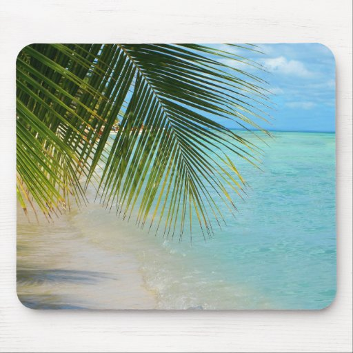Tropical palm tree and ocean on beach mousepad