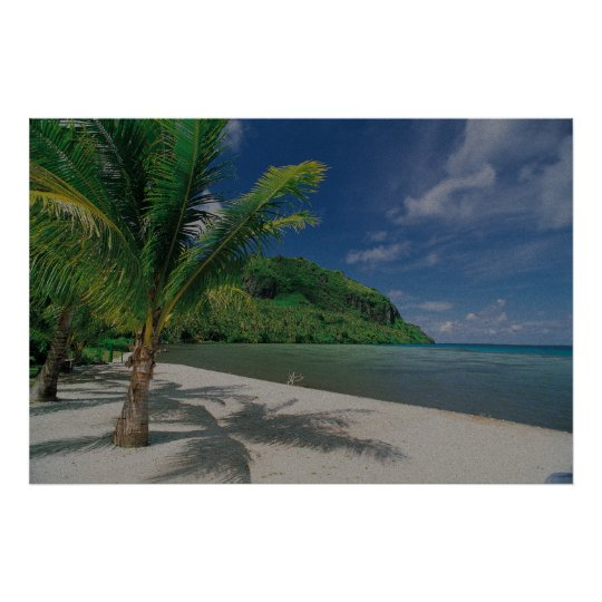 Tropical Palm Tree Beach Painting Poster
