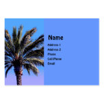 tropical palm tree business card templates